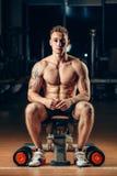 Muskulöser Bodybuilder des Athleten, der zurück mit ausbildet Stockfotos