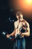 Muskulöser Bodybuilder des Athleten, der zurück mit ausbildet Lizenzfreies Stockbild