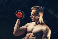 Muskulöser Bodybuilder des Athleten, der zurück mit ausbildet Stockbilder