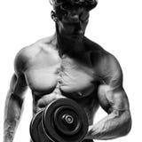 Muskulöser Bodybuilderkerl, der Übungen mit Dummköpfen tut Stockbilder