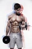Muskulöser Bodybuilderkerl, der Übungen mit Dummköpfen tut lizenzfreie stockbilder