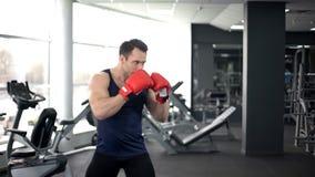 Muskulöser Boxer in den Handschuhen ausbildend in der Turnhalle, kämpfende Position tuend, Sportgeist lizenzfreie stockbilder