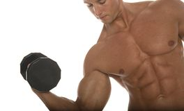 Muskulöser Erbauer der männlichen Karosserie Stockfotos
