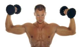 Muskulöser Erbauer der männlichen Karosserie Stockbilder