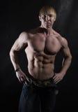 Muskulöser junger Bodybuilder Stockbild
