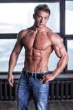 Muskulöser junger sexy Kerl, der in den Jeans und im nackten Torso aufwirft Stockbild