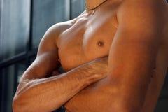 Muskulöser Kasten eines jungen Mannes Lizenzfreie Stockfotos
