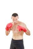 Muskulöser männlicher Boxer bereit, mit Boxhandschuhen zu kämpfen Lizenzfreies Stockfoto