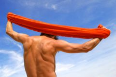 Muskulöser männlicher Torso Lizenzfreies Stockbild