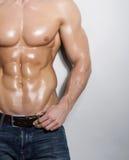 Muskulöser männlicher Torso Stockfotografie