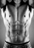 Muskulöser männlicher Torso Stockfoto