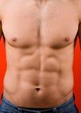 Muskulöser männlicher Torso getrennt auf rotem Hintergrund stockfoto