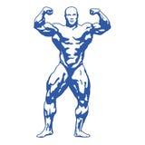Muskulöser Mann des Bodybuilders Lizenzfreie Stockfotos