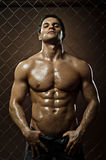 Muskulöser sexy Kerl Lizenzfreies Stockbild