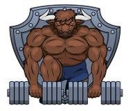 Muskulöser Stier hebt Dummköpfe 2 an Stockfotos