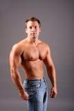 Muskulöses Baumuster Lizenzfreie Stockfotografie
