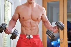 muskulöst kraftigt för man Arkivfoton