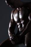 muskulöst sexigt för huvuddelbyggmästare Arkivbilder