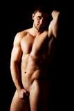 muskulöst sexigt för macho man Arkivbild