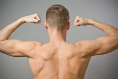 muskulöst sexigt för tillbaka man Arkivbilder