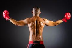 Muskulös boxare i studio Fotografering för Bildbyråer