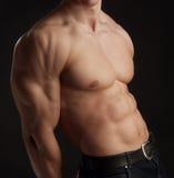 muskulös naken torso för man Arkivbild