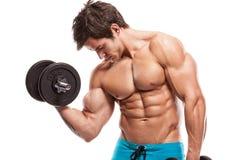 Muskulöser Bodybuilderkerl, der Übungen mit Dummköpfen über whi tut Stockbild