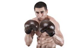 Muskulöser Mann, Boxer, der im Studio in den Handschuhen, lokalisiert auf weißem Hintergrund aufwirft Stockfoto