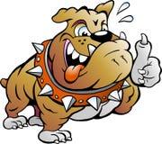Muskulöser Stier-Hund, der Daumen aufgibt Stockfoto