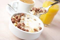 Musli e leite fotografia de stock royalty free