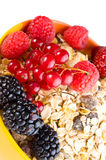 Musli and fresh berries Stock Image