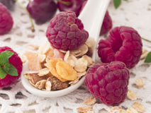Musli with fresh raspberries Royalty Free Stock Images