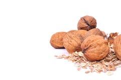 Musli and walnuts healty breakfast Royalty Free Stock Photography