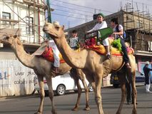 Muslim boys on camel riding in  Nairobi Stock Images