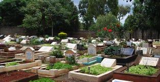 Muslim cemetry. A view of Muslim cemetery Stock Photos