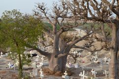 Muslim and Christian graveyard in Joal-Fadiouth, Petite Côte, Senegal. Joal-Fadiouth is a town in the Thiès Region at the southern end of the Petite Côte of Royalty Free Stock Photo