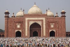 Muslim Prayers at the Taj Mahal Royalty Free Stock Photography