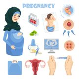 Muslim pregnant woman with set of medicine labels. Vector colorful illustration with pregnancy concept. Muslim pregnant woman. Vector colorful illustration with Royalty Free Stock Photo