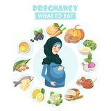 Muslim pregnant woman. Vector colorful illustration with pregnancy concept. Healthy food. Month by month of pregnancy Stock Photography