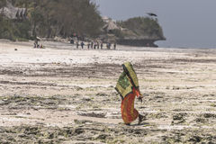 Muslim Woman on the beach. One WomAn with colorful clothes wolking at  Michanwi Pingwe Beach in Zanzibar , Tanzania . Africa Stock Photos