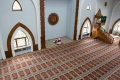 Muslim woman reading Koran Stock Images