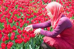 Muslim woman in tulips garden Royalty Free Stock Image