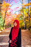 Muslim woman wearing hijab Stock Image