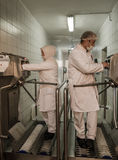 Muslim woman workers working in a chicken meat plant. Royalty Free Stock Images