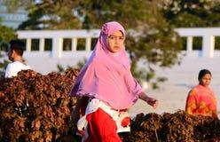 Muslimsk flicka Royaltyfria Bilder