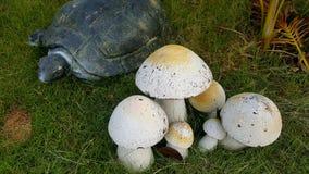 Musroom ceramico nel giardino, Immagini Stock