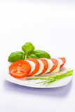 Mussarela do tomate Imagens de Stock Royalty Free