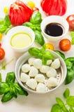 Mussarela na bacia com folhas da manjericão, óleo, tomates e vinagre balsâmico, ingredientes de alimento italianos imagens de stock