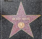 Musse Piggs stjärna på Hollywood royaltyfria foton