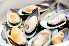Mussel Stock Photos